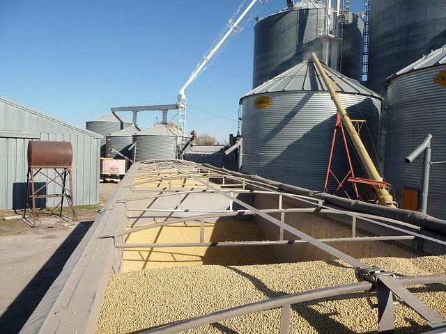 Grain-auger-accident